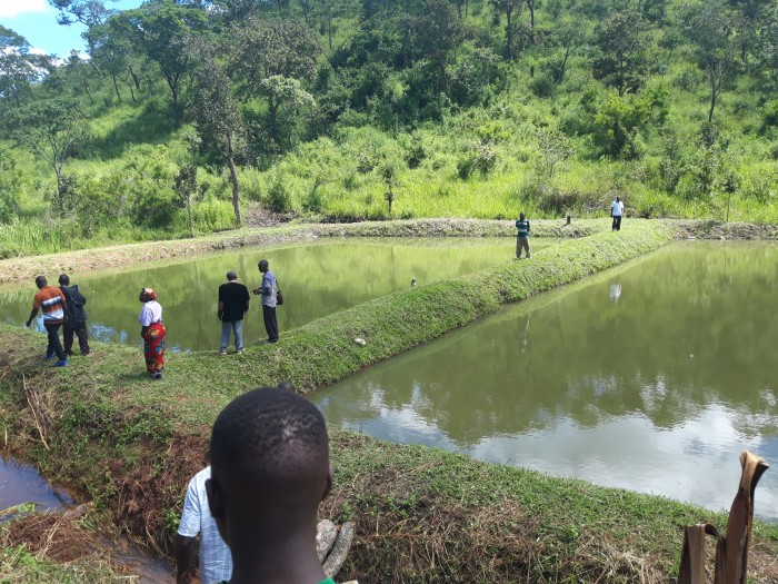 Reaping Benefits from Rainwater Harvesting